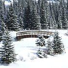 Cascade Christmas by Tiffany Vest