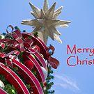 Merry Christmas II by DianaC