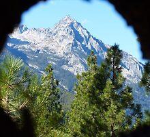 Through a Lens by lindasdreams