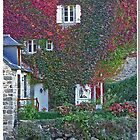 French Autumn  House Wall by punch