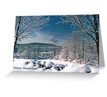 Winter Wonderland holiday card Greeting Card
