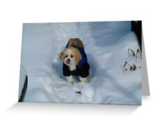 ☃ I LIKE THE TASTE OF SNOW☃ Greeting Card