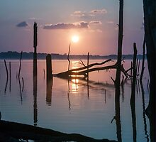 Sunrise over Manasquan Reservoir by Debra Fedchin