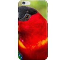 Black-capped Lorry iPhone Case/Skin