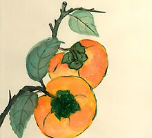 Persimmon from Amphai Masquelier by Baina Masquelier