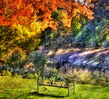 Park Bench by Mike  Savad