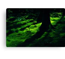 irish green Canvas Print