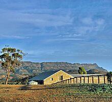 Flinders Ranges Woolshed by craignoble
