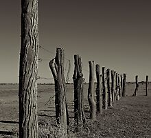 Old Cattle Yard by Craig Hender