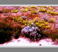 Desert Wildflowers and Sagebrush by maggiebarra
