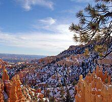 Bryce Canyon #1 - USA by Paul Gilbert