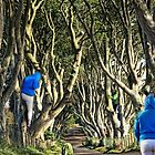 Lost in the Dark Hedges by Julesrules