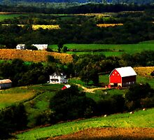 Iowa Countryside by Lori Botelho