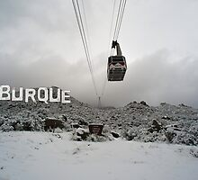 Burque Tram by IOBurque