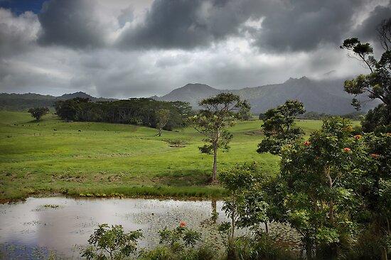 Kauai Storm by Sashy