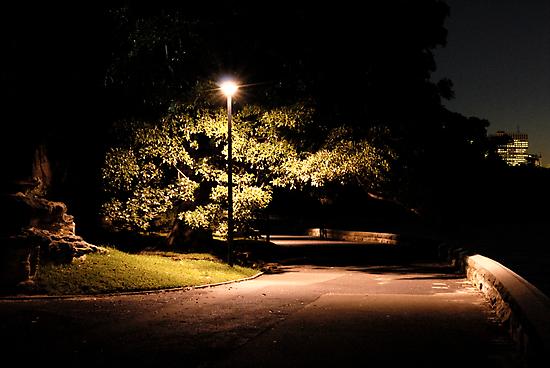 Loneliness by DavidIori