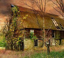 The Abandoned Barn at Sunset by Debra Fedchin