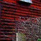 Rust Bucket by joconti