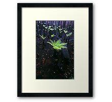 after the fire...after the rain...Regeneration. Framed Print