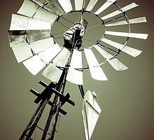 Tilting at Windmills by Colin Tobin