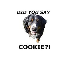 Did you say cookie Photographic Print