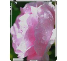 Water Droplets on Delicate Pink Rose iPad Case/Skin