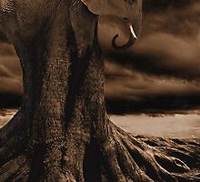 Elephantree by Michael Coots