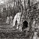 Coke Ovens Dunlap Tennessee by © Joe  Beasley IPA