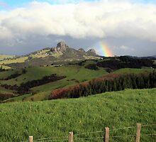 Rainbow over Taratara-Whangaroa by tonyfoster