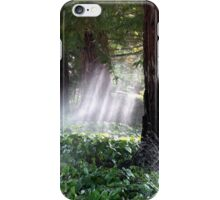 Mystical Moment with the Redwoods iPhone Case/Skin