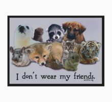 I don't wear my friends by Samitha Hess