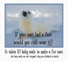 Seal Coat by Samitha Hess