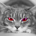 Evil Eye by David Edwards