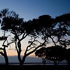 Twilight - Fort Fisher by RKastl