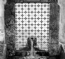 1825 Spring Water Fountain by Eduardo Tavares