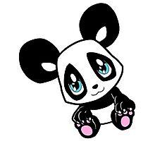 Little Panda Photographic Print