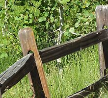 CROOKED FENCE by RBHPRODUCTION