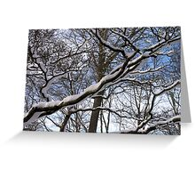 Wrapped in Winter's Cold Embrace Greeting Card