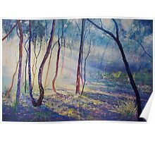Ironbark Country Morning Poster