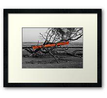 Yak Rak Framed Print