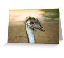 Emu Eyes Greeting Card