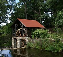 The Watermill by Mary Lake