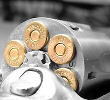 .357 mag by Danielle LaBerge