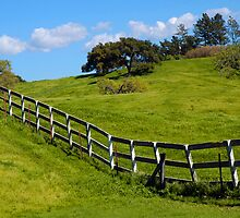 Santa Ynez Ranch by Eyal Nahmias
