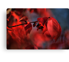 red leaves consumed in bokeh Canvas Print