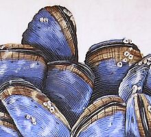 mussels II by cathy savels