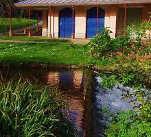 The Lawn Park, Dawlish by lezvee