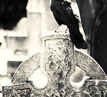 Crow Celtic Cross by joelmeadows1