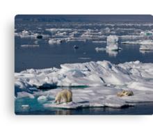 Ice Retreat Canvas Print