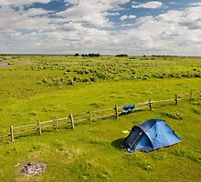 Camping tent and grass expanse landscape  by Arletta Cwalina